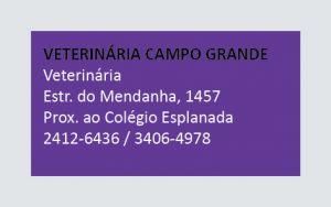 Vet. Campo Grande